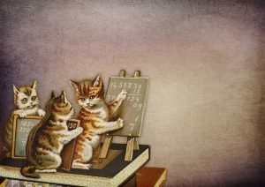 Vintage drawing of a cat teaching math