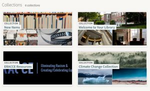 Screen shot of library website featuring book collections