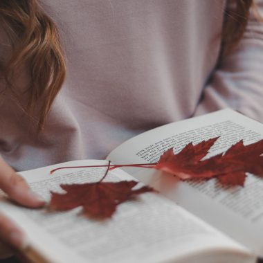 Photo of leaves on a book
